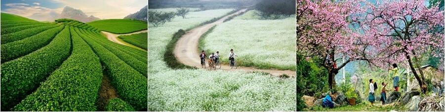 trekking vietnam maichau 1