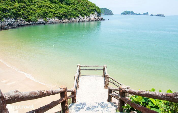 Cosa fare sulle attrazioni di Cat Ba Island, tour, crociere, parco nazionale, ristoranti e hotel