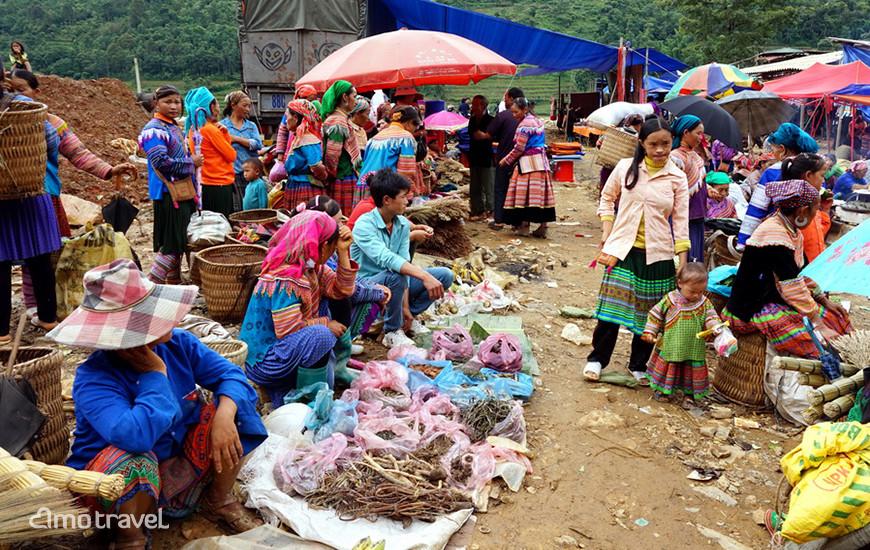 Reparto per le medicine erbarli del mercato di Can Cau - Bac Ha - Sapa